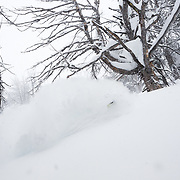 Andrew Whiteford skis blower storm powder in-bounds at Jackson Hole Mountain Resort.