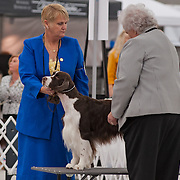 Candids from the 2013 ESSFTA National.  The event took place October 26th thru November 2nd, at Purina Farms, in  Gray Summit, MO.  Photography by Melody Carranza.