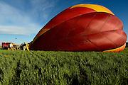Balloon Pilot Chuck Mitchell launch his balloon named Nanchuckit's Burning Desire, Sunday, June 2, 2013, at Centennial Park in Frederick.<br /> (Matthew Jonas/Times-Call)