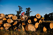 Young girls entertain themselves on large logs at the Ride Across Rosebud camp in Rosebud, South Dakota July 15, 2013. Photo by Lauren Justice
