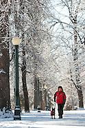 *Cheesman Park Winter