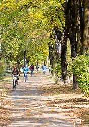 THEMENBILD - Menschen auf Fahrrädern an einem an einem sonnigen Herbsttag entlang des Innufers, aufgenommen am 23. Oktober 2015, Innsbruck, Österreich // people on bicycles driving along the Inn riverbank on a sunny Autumn Day, Baumkirchen, Austria on 2015/10/23. EXPA Pictures © 2015, PhotoCredit: EXPA/ Jakob Gruber