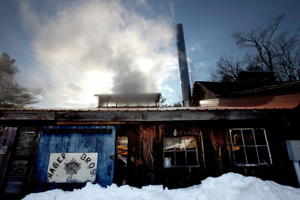 Steam spills out from the top of the Hager Brothers Maple Farm sugar house in Colrain, MA on March 8, 2010. Every year from late February through early April, farmers all over Massachusetts take to the woods with buckets, tubing and drills to gather the sap from sugar maple trees, boiling it down to pure maple syrup.