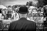 The annual Driffield Show, July 20, 2011, judgeing the sheep