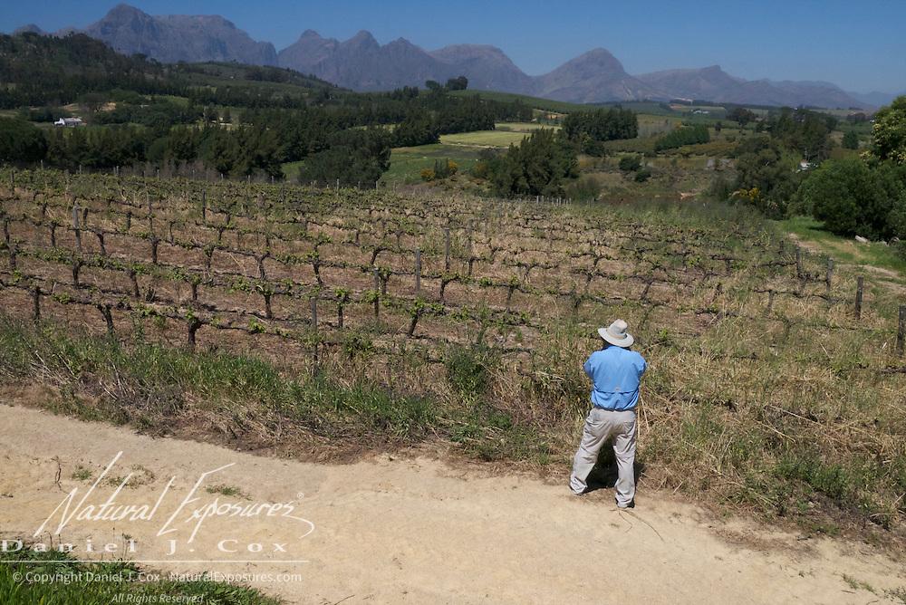 Tom explores the Druk My Niet, Vineyard, South Africa.