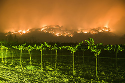 October 10, 2017 - Woodley Canyon, Napa County, California, U.S. - The Atlas Fire burns near vineyards along Wooden Valley Road, late Tuesday evening in Napa County, in this long exposure image. The Atlas Fire burns in Napa and Solano Counties, the fire was 3% contained and had burned 25,000 acres. Multiple structures were destroyed as crews battled strong winds and tinder dry vegetation after multiple fires burned in the area. (Credit Image: © Stuart Palley via ZUMA Wire)