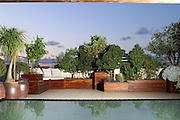 A penthouse roof garden