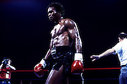 11 May 1984:  Sugar Ray Leonard during his bout with Kevin Howard.  Leonard won the fight with a knockout in the ninth round..Mandatory Credit:  Manny Millan/Icon SMI