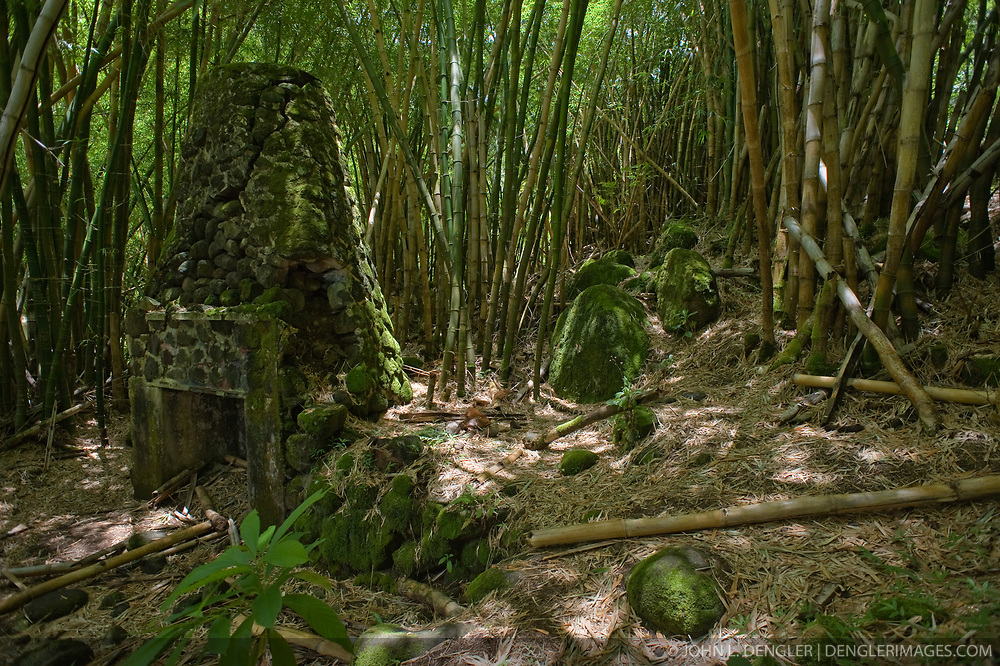 In a dense grove of bamboo in the  Hanakapiai Valley lies the remains of a stone chimney of a coffee mill from the late 19th century. The remnants can be seen on the trail to Hanakapiai Falls in the Na Pali Coast State Wilderness Park. The 120 foot falls are reached by way of a two mile primitive side trail off the Kalalau Trail which runs along the Na Pali coast on the northern shore of the island of Kauai in Hawaii. From the Kalalau trailhead at Kee Beach in Haena State Park, the strenuous hike is eight miles roundtrip.