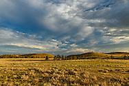 Late evening sunlight gave the plains of Southeast Montana a golden glow.