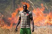 2018 - Farming against migration - Senegal