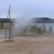 Yellowstone Lake Thermal Geyser Steam - Yellowstone National Park