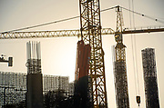 Multiple Construction Cranes Silhouette