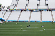 Groundsmen put the finishing touches to the pitch ahead of the 2014 FIFA World Cup match at Arena Corinthians, Sao Paulo<br /> Picture by Andrew Tobin/Focus Images Ltd +44 7710 761829<br /> 19/06/2014