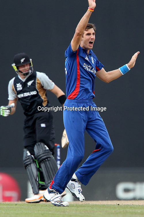 Steven Finn of England celebrates the wicket of Martin Guptil during the ICC World Twenty20 Super 8s match between England and New Zealand held at the  Pallekele Stadium in Kandy, Sri Lanka on the 29th September 2012<br /> <br /> Photo byRon Gaunt/SPORTZPICS/PHOTOSPORT