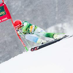 06_Alpine skiing