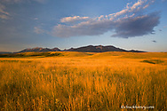 Praire grasslands in the foothills of the Absaroka Mountains near Livingston Montana