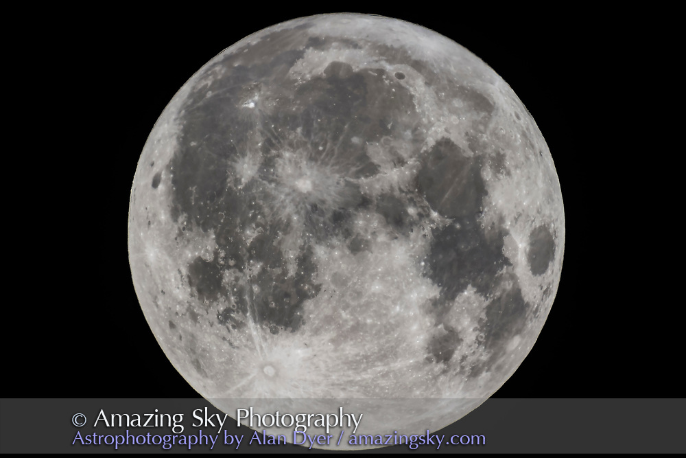 The Full Moon of September 5, 2017, the Harvest Moon, as shot through my 130mm apo refractor for a frame-filling view. I used a 2X Barlow and the Canon 60Da camera. The view nicely shows the rays structures from Tycho and Copernicus, and other relatively new crateres, and the bright region around Aristarchus at upper left. <br /> <br /> While I haven&rsquo;t overly exaggerated the contrast and colour saturation here, you can still see the difference in darkness among the various lunar mare areas, due to the compositions of the lava flows that created them.<br /> <br /> This is a single 1/125 second exposure at f/12 and ISO 100.