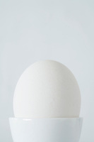 Egg in egg cup close up studio shot