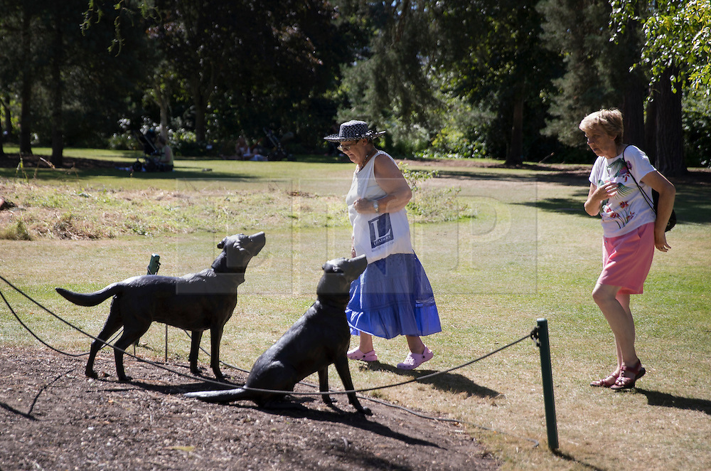 © Licensed to London News Pictures. 23/08/2016. Wisley, UK.  A sculpture of two dogs greets visitors to RHS Wisley in afternoon sunshine. Photo credit: Peter Macdiarmid/LNP