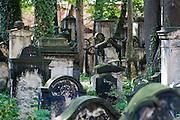 Jüdischer Friedhof, Neustadt, Dresden, Sachsen, Deutschland | Jewish cemetery, Neustadt, Dresden, Saxony, Germany,