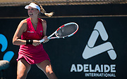 Anett Kontaveit of Estonia in action during her first-round match at the 2020 Adelaide International WTA Premier tennis tournament against Anastasia Pavlyuchenkova of Russia Photo Rob Prange / Spain ProSportsImages / DPPI / ProSportsImages / DPPI