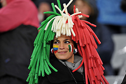 Football - soccer: FIFA World Cup South Africa 2010, Italy (ITA) - Paraguay (PRY), UNA TIFOSA ITALIANA
