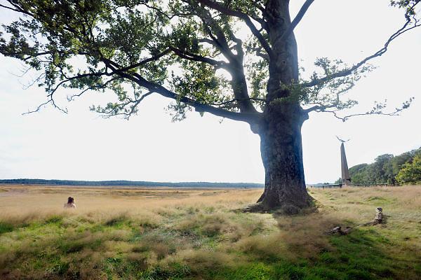 Nederland, Ede, 5-8-2012Monument op de Ginkelse Heide (rechts) voor de airborne parachutisten die hier landden tijdens de operatie Market Garden in 1944.Het is ook een mooi natuurgebied waar mensen een wandeling door de heidevelden kunnen maken.Een vrouw zit in het gras te rusten.Foto: Flip Franssen/Hollandse Hoogte