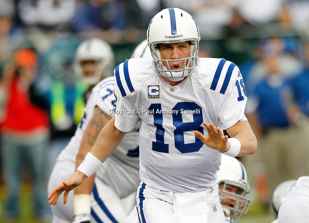 Indianapolis Colts quarterback Peyton Manning (18) calls an audible during the NFL week 16 football game against the Oakland Raiders on Sunday, December 26, 2010 in Oakland, California. The Colts won the game 31-26. (©Paul Anthony Spinelli)