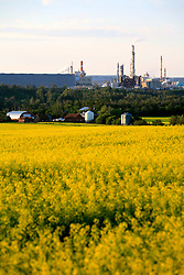 CANADA ALBERTA EDMONTON 24JUL09 - View of an upgrader plant located behind farming land north of Fort Saskatchewan near Edmonton, Alberta, Canada...The tar sand deposits lie under 141,000 square kilometres of sparsely populated boreal forest and muskeg and contain about 1.7 trillion barrels of bitumen in-place, comparable in magnitude to the world's total proven reserves of conventional petroleum. Current projections state that production will  grow from 1.2 million barrels per day (190,000 m³/d) in 2008 to 3.3 million barrels per day (520,000 m³/d) in 2020 which would place Canada among the four or five largest oil-producing countries in the world...The industry has brought wealth and an economic boom to the region but also created an environmental disaster downstream from the Athabasca river, polluting the lakes where water and fish are contaminated. The native Indian tribes of the Mikisew, Cree, Dene and other smaller First Nations are seeing their natural habitat destroyed and are largely powerless to stop or slow down the rapid expansion of the oil sands development, Canada's number one economic driver...jre/Photo by Jiri Rezac / GREENPEACE..© Jiri Rezac 2009