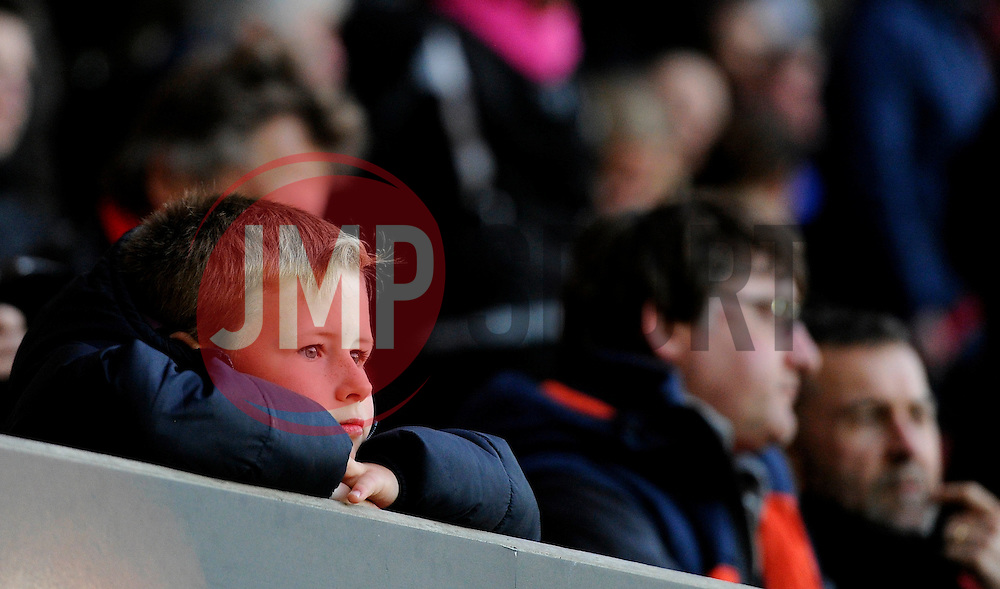 Fan  - Mandatory by-line: Joe Meredith/JMP - 05/04/2016 - FOOTBALL - Ashton Gate Stadium - Bristol, England - Bristol City v Rotherham United - Sky Bet Championship