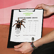 London Zoo Annual Stocktake 2015