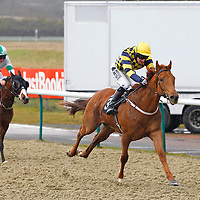 Lingfield 12th April 2013
