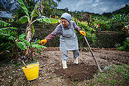 """Misako Miyagi, the widow of an Imperial Army officer, works in her garden, where she raises vegetables, and greens.  She lives alone in her home in the village of Ogimi on the main island of Okinawa.  Okinawans have a complicated relationship, not only with the Americans who have bases on the island, but they also have a contentious relationship with what they describe of as """"mainland"""" Japan.  Okinawans founded the Ryukyu Kingdom.   Although their culture is considered most closely related to Japan, the Ryukyu Kingdom paid a tribute to the Emperor of China until the Satsuma of Japan's Kyushu invaded Okinawa in 1609.  Many Okinawans still resent this invasion to this day, and it could be suggested that it still colors their view of outsiders."""