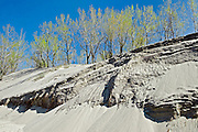 Sand dunes along Lake Erie<br /> Long Point Provincial Park<br /> Ontario<br /> Canada