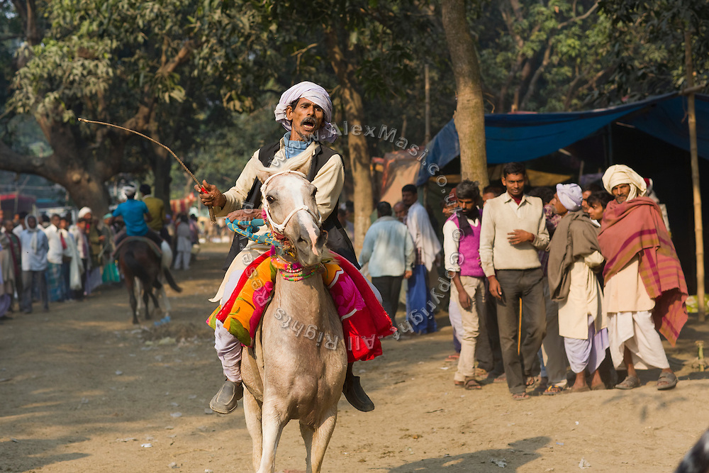 A crowd is observing a keen horseman inciting his stallion, during a race organised at the yearly Sonepur Mela, Asia's largest cattle market, in Bihar, India.