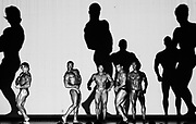 BODYBUILDING<br />