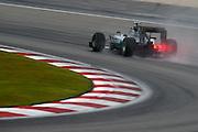 March 27-29, 2015: Malaysian Grand Prix - Nico Rosberg  (GER), Mercedes