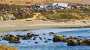 Northern Elephant Seals viewing area, Piedras Blancas Elephant Seal Rookery, San Simeon, California USA