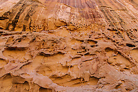Tafoni rock wall erosion patterns; Crack Canyon, San Rafael Swell, Utah