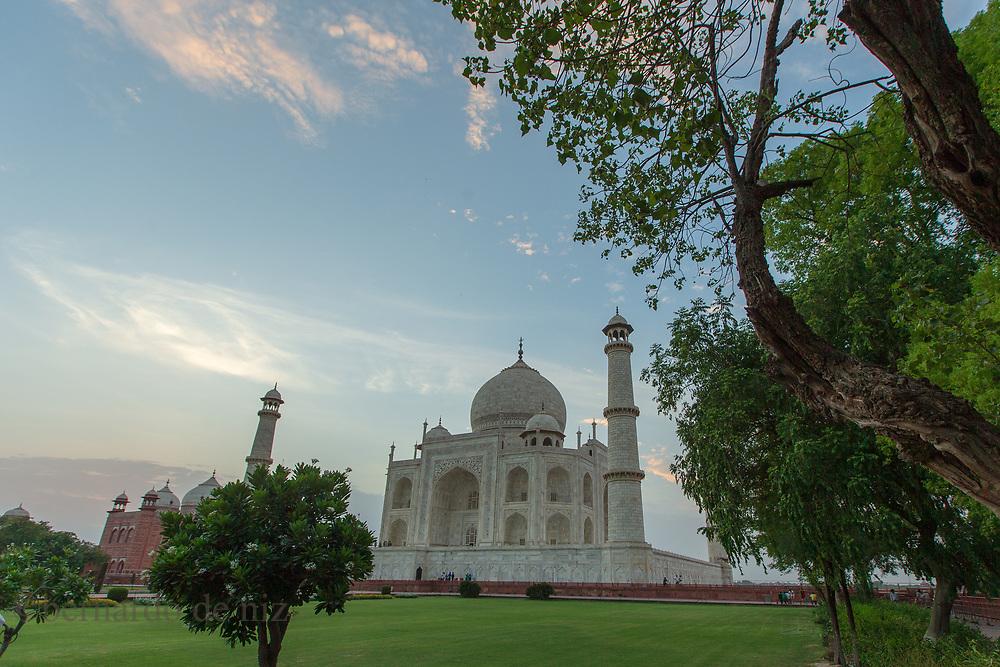 Traveling with Live learnt travel project to India & Nepal, July 4,  2014. Agra, India.. Photographer: Bernardo De Niz