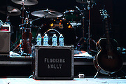 Flogging Molly performs at the Congress Theater in Chicago, Illinois on 2011-03-11.