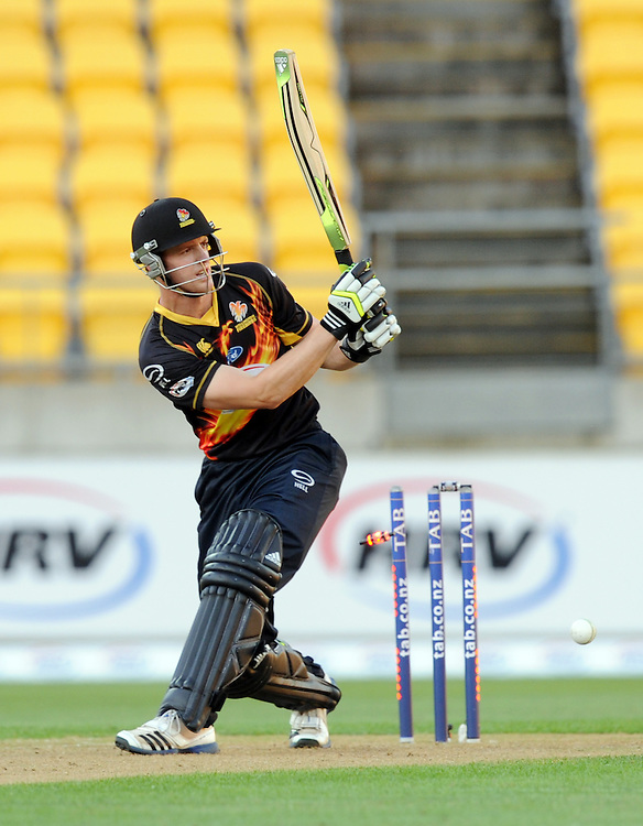 Wellington Firebirds Michael Pollard is bowled by Auckland Aces Donovan Grobbelaar in the HRV T20 cricket match at Westpac Stadium, Wellington, New Zealand, Saturday, November 23, 2013. Credit:SNPA / Ross Setford