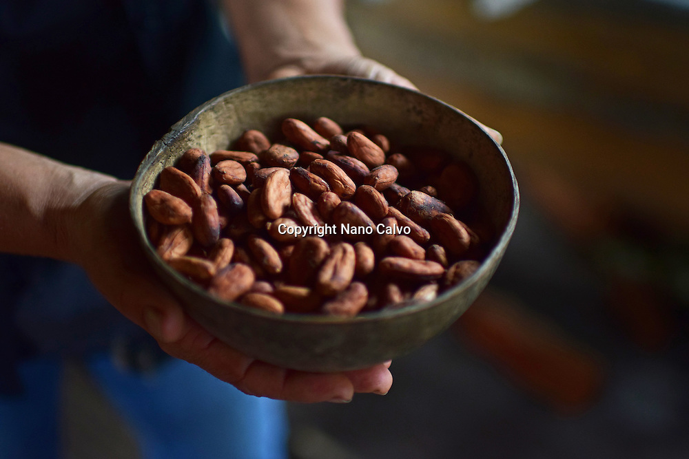 Preparing natural cacao drink at Bribri tribe house. <br /> <br /> A day with the Bribri, indigenous people in Lim&oacute;n Province of Costa Rica.