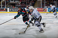 KELOWNA, BC - OCTOBER 04: Marek Skvrne #9 of the Kelowna Rockets checks Kaid Oliver #34 of the Victoria Royals as he skates with the puck during second period at Prospera Place on October 4, 2017 in Kelowna, Canada. (Photo by Marissa Baecker/Getty Images)