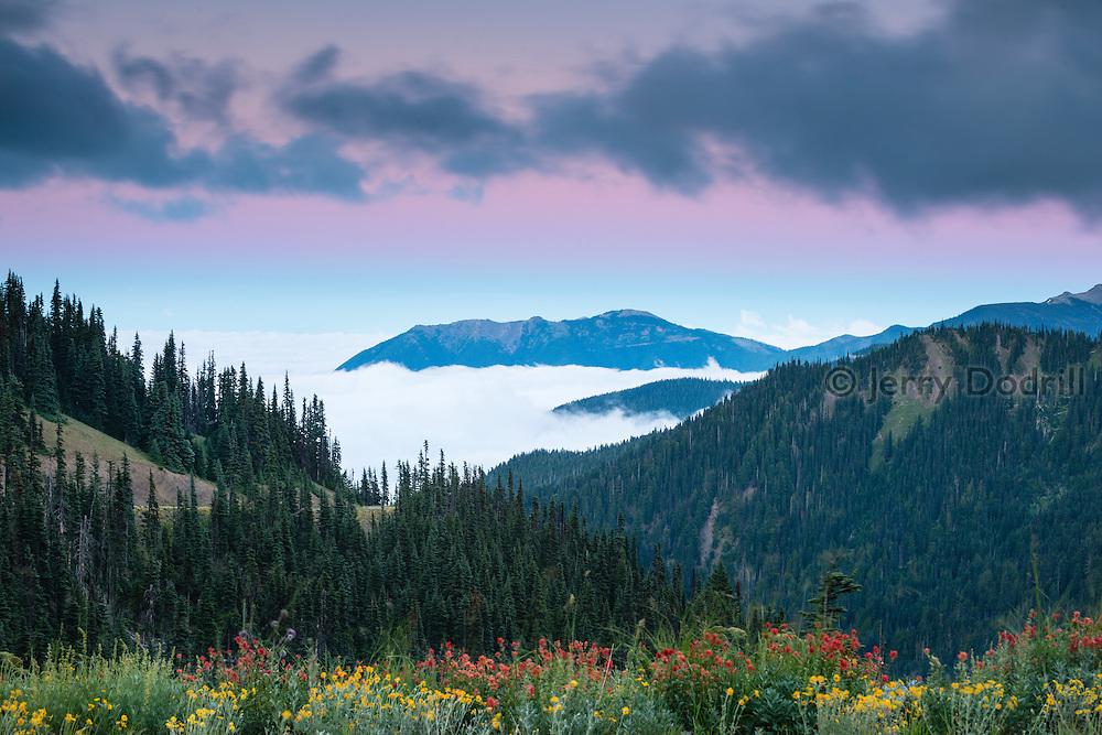 Twilight at Hurricane Ridge, Olympic National Park, Washington