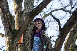 Harefield, UK. 18 January, 2020. An earth protector stands in a tree at Stop HS2's Colne Valley wildlife protection camp. Activists from Extinction Rebellion, Stop HS2 and Save the Colne Valley reoccupied the camp from which all but two activists had been evicted by enforcement agents acting for HS2 the previous week during the second day of a three-day 'Stand for the Trees' protest in the Colne Valley timed to coincide with tree felling work by HS2. 108 ancient woodlands are set to be destroyed by the high-speed rail link.
