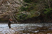 Speycasting for winter steelhead on Vancouver Island river.