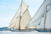 "France Saint - Tropez October 2013, Classic Yachts racing at the Voiles de Saint - Tropez<br /> C,C1,MARIQUITA,""33,7"",19M JI AURIQUE/1911,WILLIAM FIFE<br /> C,A9,ELENA OF LONDON,""50,8"",GOELETTE AURIQUE/2009,HERRESHOFF"