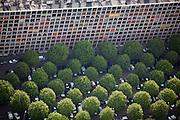 Meudon, département des Hauts-de-Seine (92), résidence du parc, parking area under mature planted trees.